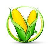 Vegetal do milho ilustração royalty free