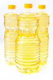 Vegetal do petróleo Imagem de Stock Royalty Free