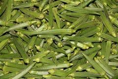 Vegetal do quiabo Fotografia de Stock