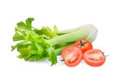 Vegetal do tomate e do aipo isolado no branco Fotografia de Stock Royalty Free