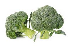 Vegetal dos brócolis Fotografia de Stock