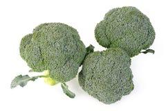 Vegetal dos brócolis Imagens de Stock Royalty Free