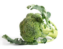 Vegetal dos brócolos isolado no fundo branco Fotografia de Stock Royalty Free