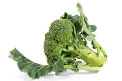 Vegetal dos brócolos isolado no fundo branco Imagem de Stock