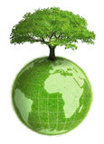 Vegetal earth. A vegetal earth with a tree