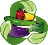 Vegetal ecológico Imagem de Stock Royalty Free