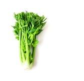 Vegetal fresco do aipo no fundo branco, alimento saudável Imagem de Stock