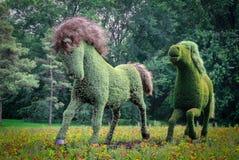 Vegetal hästar från Mosaicultures av Montreal 2013 Royaltyfria Bilder
