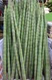 Vegetal indiano do pilão fotografia de stock royalty free