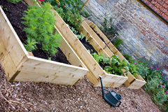 Vegetal & jardim rústicos do país com camas aumentadas Imagem de Stock