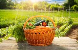 vegetal na cesta na tabela de madeira Fotos de Stock