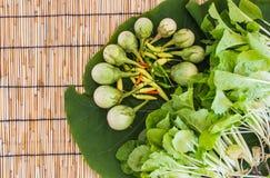 Vegetal no assoalho cego do folha e o de bambu Fotos de Stock