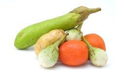 Vegetal no fundo branco Foto de Stock