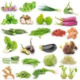 Vegetal no fundo branco Fotos de Stock