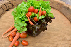Vegetal orgânico imagem de stock royalty free