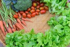 Vegetal orgânico imagens de stock