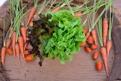 Vegetal orgânico imagem de stock