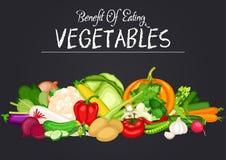 Vegetal orgânico fresco ilustração stock
