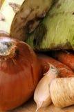 Vegetal orgânico Mouldy fotos de stock