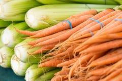 Vegetal orgânico no mercado dos fazendeiros Fotografia de Stock