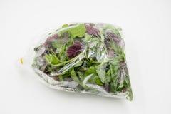 Vegetal orgânico verde no fundo branco Fotografia de Stock Royalty Free