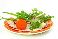 Vegetal para a salada Foto de Stock Royalty Free
