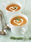 _vegetal poner crema sopa imagen de archivo