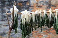 Vegetal secado chinês da vida no campo e do sol Fotografia de Stock