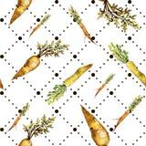 Vegetal selvagem da cenoura alaranjada Teste padrão sem emenda do fundo Textura da cópia do papel de parede da tela fotografia de stock royalty free