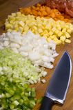 Vegetal soppaingredienser Arkivfoto