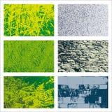 Vegetal and Stone Textures Set Royalty Free Stock Photos