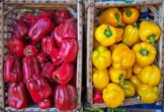 Vegetal vermelho e amarelo da pimenta Fotografia de Stock