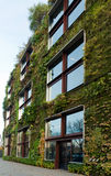 Vegetal wall in Paris. Musée Branly royalty free stock photos