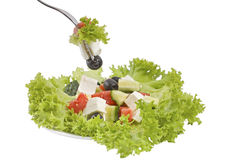 Vegetale salat Royalty Free Stock Photos