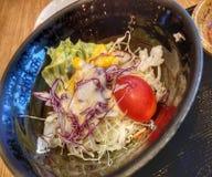 vegetariër Royalty-vrije Stock Foto