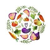 Vegetari?r met groenten en vruchten wordt geplaatst die royalty-vrije illustratie