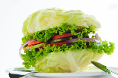 vegetarian бургера Стоковое Фото