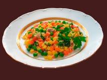 vegetarian диетпитания Стоковая Фотография RF