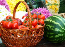 vegetarian еды стоковое изображение rf