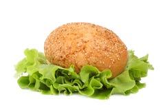 vegetarian обеда Стоковая Фотография