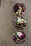 Vegetarian aperitif Stock Photography