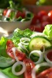 Vegetarian appetizer Royalty Free Stock Photo