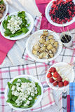 Vegetarian appetizers on a picnic in the park. Pieces of cheese and basil, strawberries and mozzarella stuffed eggplant on a picnic in the park stock photos