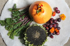 Vegetarian Royalty Free Stock Photos