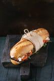Vegetarian baguette sandwich Stock Image