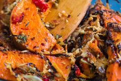 Vegetarian baked dish close-up with pumkin, vegetables, herbs, c Stock Image