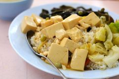 Vegetarian bean curd cuisine Stock Photography