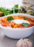 Vegetarian borsch Stock Images
