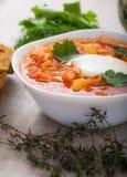 Vegetarian borsch Stock Photography
