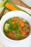 Vegetarian bouillon in soup bowl Stock Image
